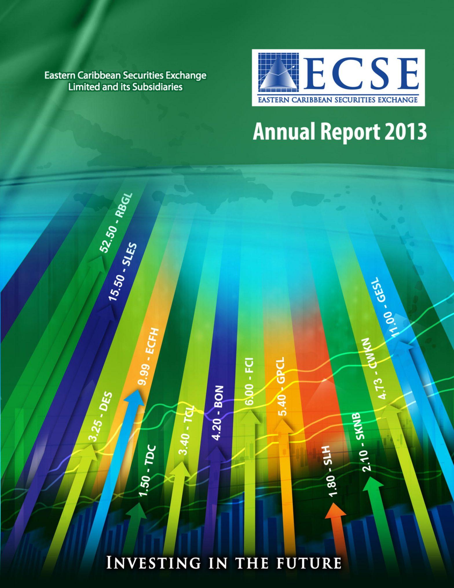 ECSE Annual Report 2013